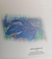 Alex Schoeller - Alex Schoeller Sulu Boya Kağıdı 50x70 cm 300 gr 50'li