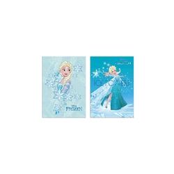 Frozen - Frozen A5 40 Yaprak Kareli pp Kapak Dikişli Defter